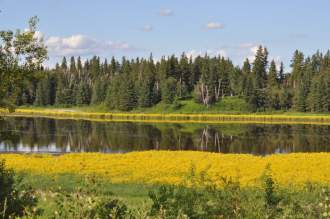 Elk Island National Nature Park